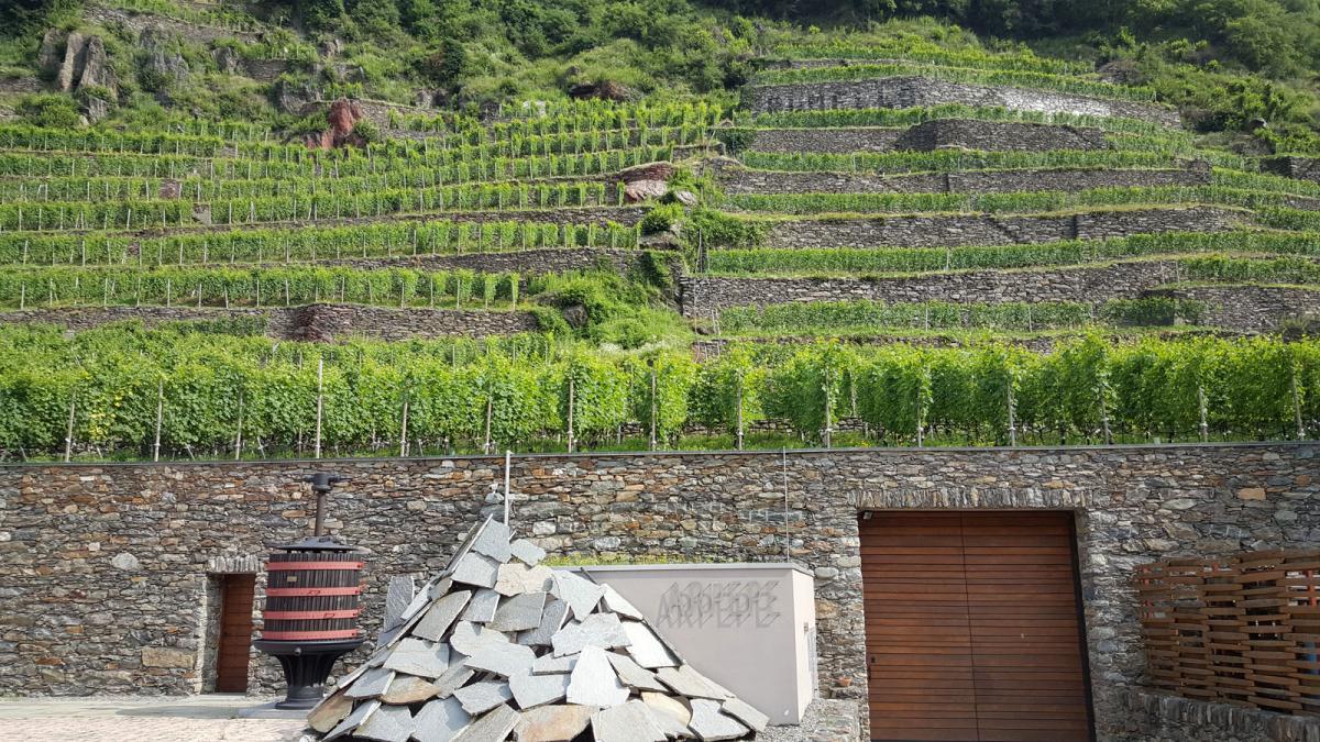 AR.PE.PE. - Tradimenti mancati e ritrovato amore in Valtellina