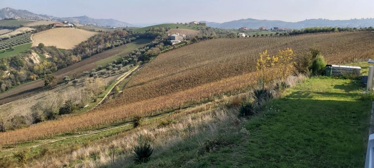 Degustazione emozionale fra mare e montagna:  gli autoctoni d'Abruzzo