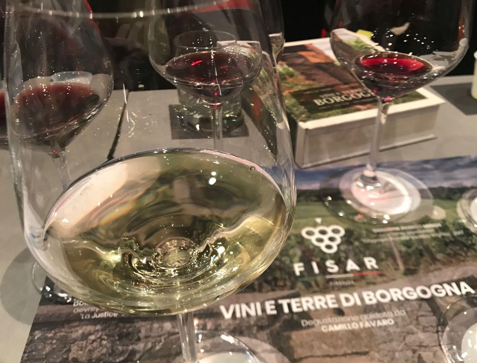 Foto Di Un Camino Acceso vini e terre di borgogna: incontro e degustazione con