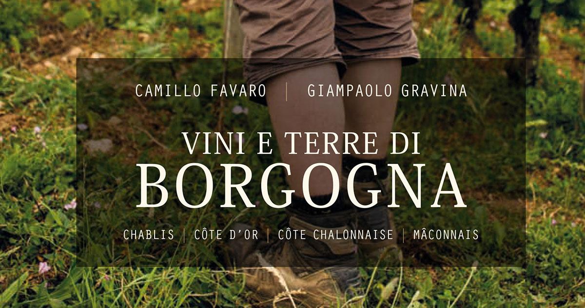 Vini e Terre di Borgogna